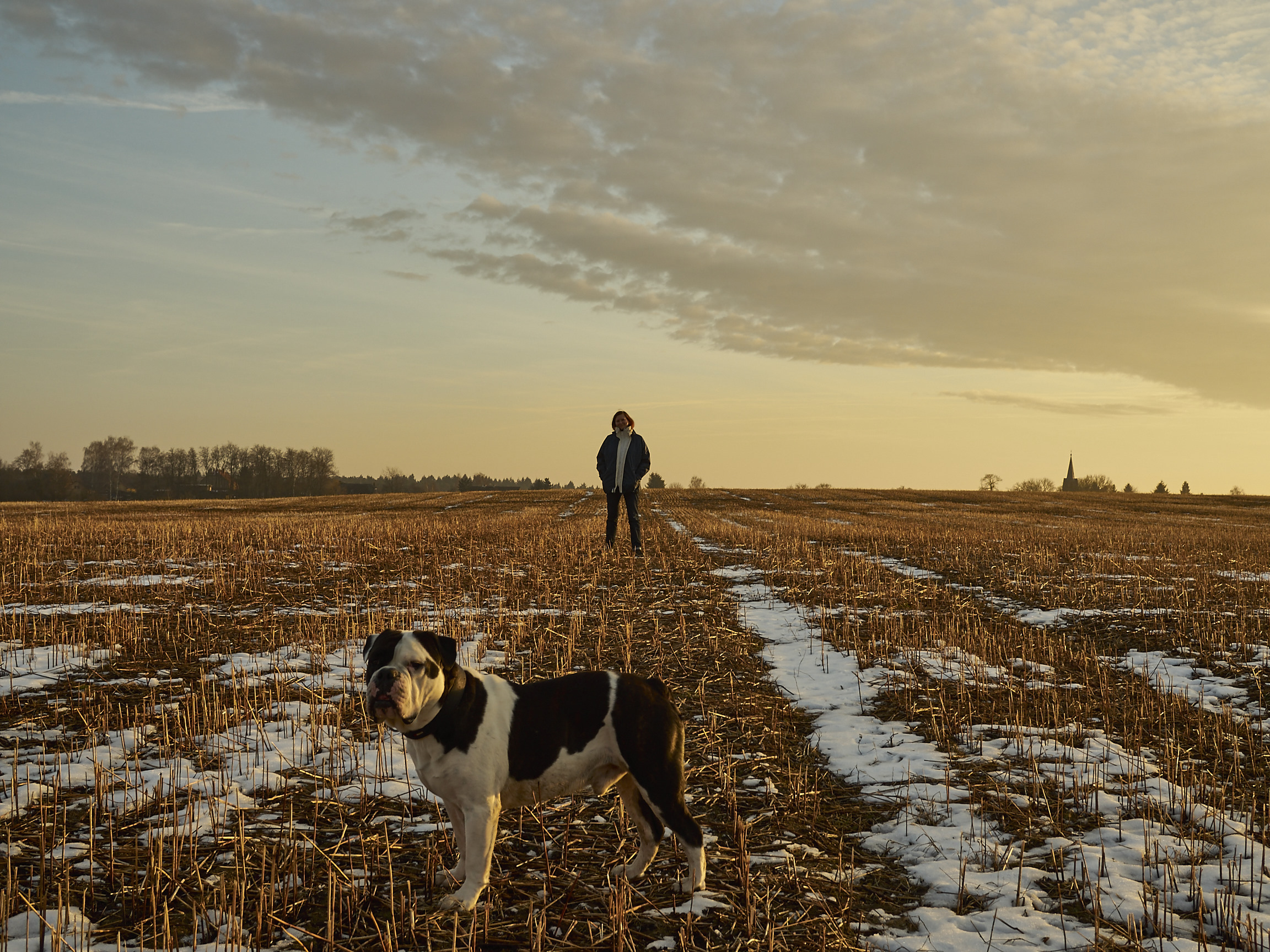 Marlenes Töchter auf dem frostigen feld mit alwin der bulldogge