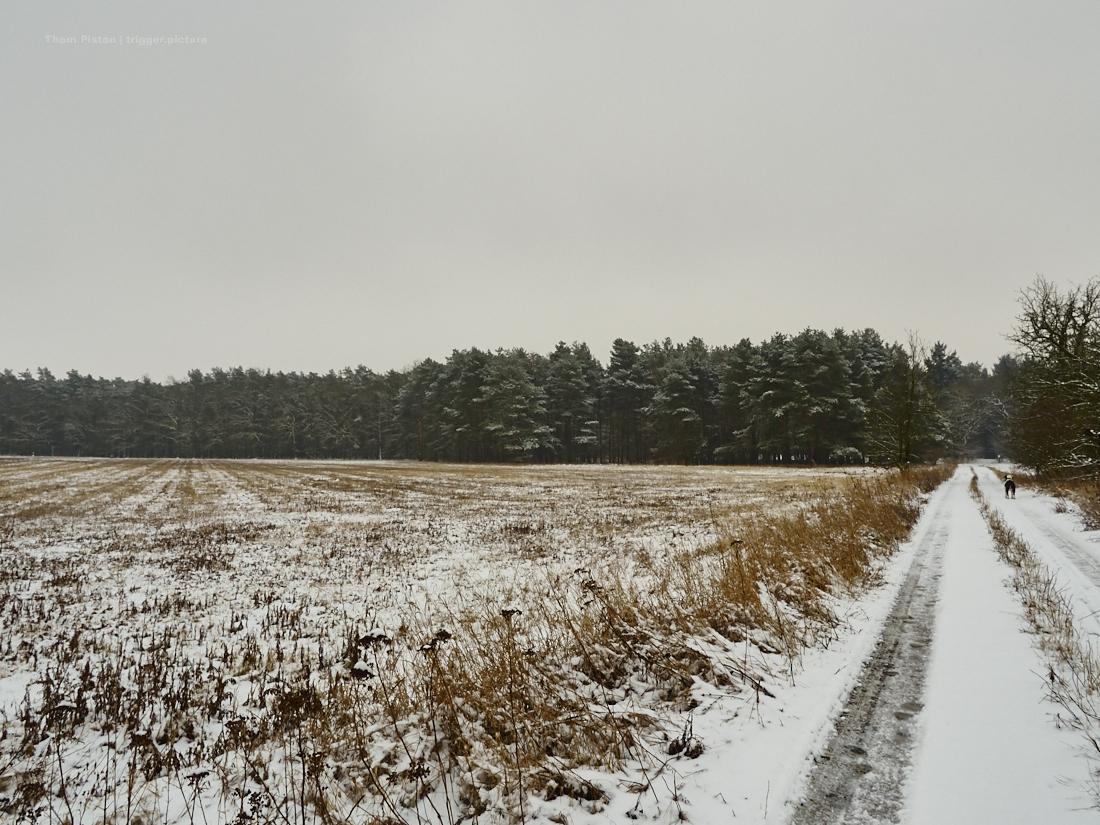schnee kalt und frostig am dakota home