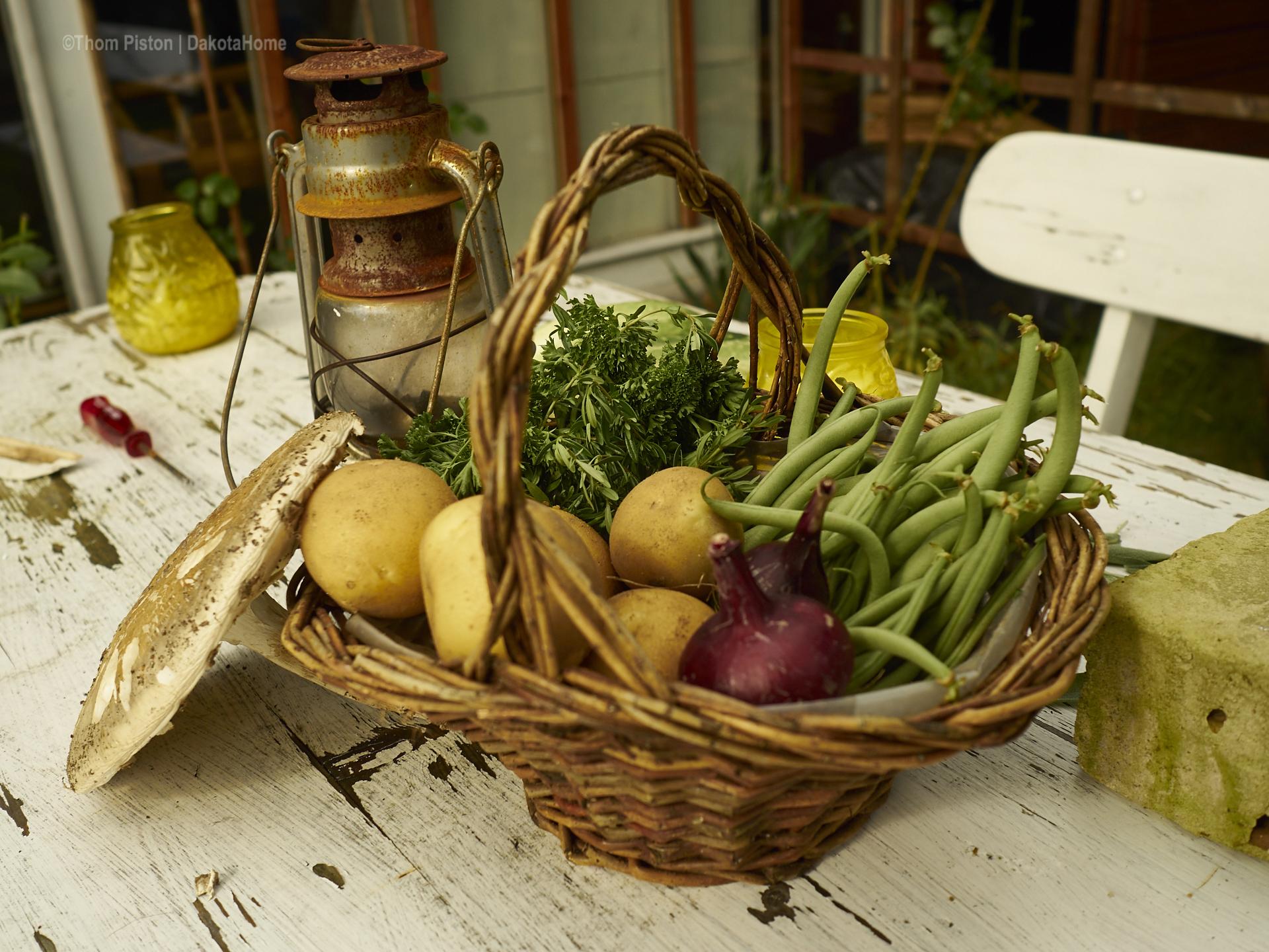Gemüse aus unserem Garten