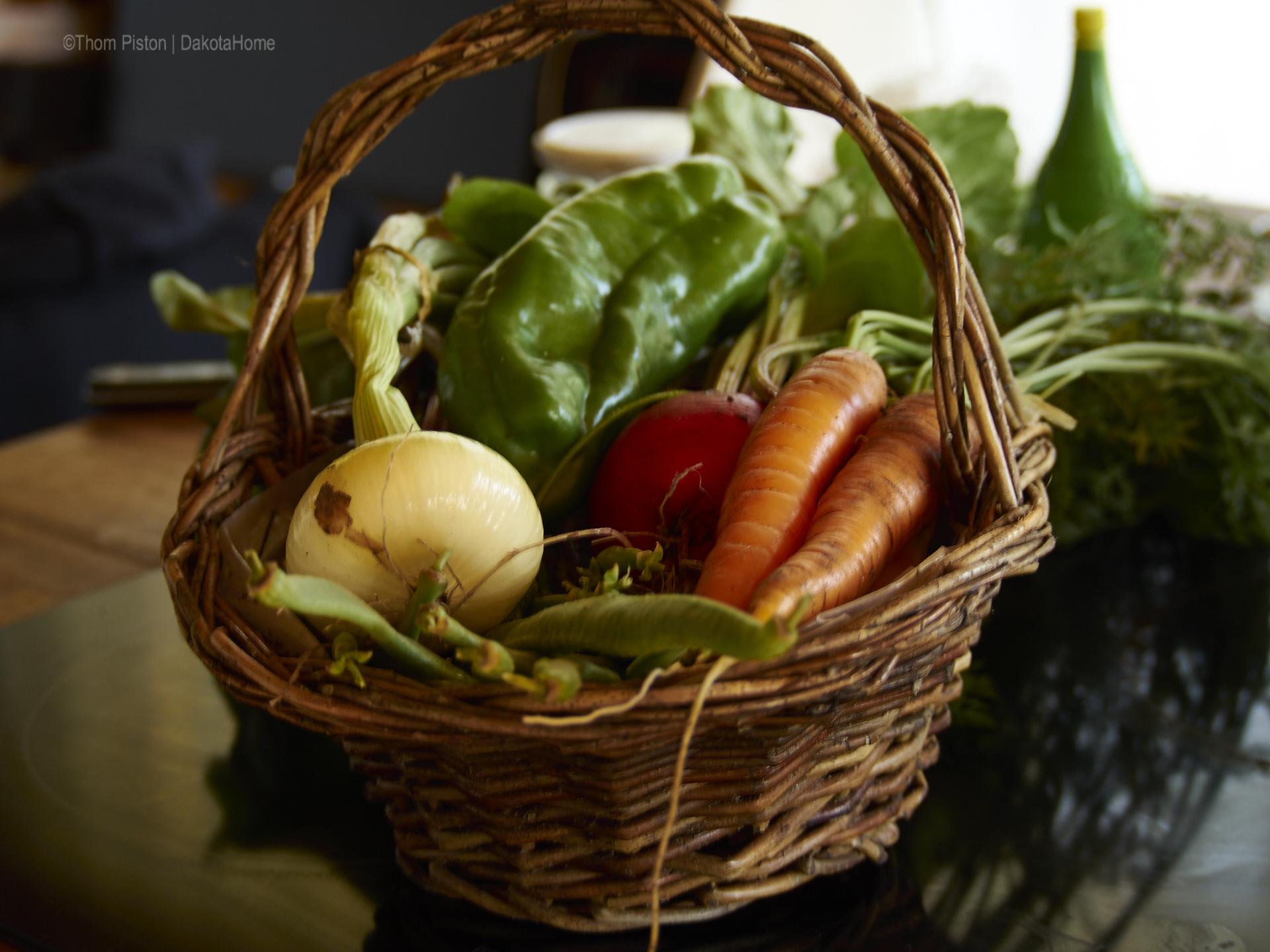 Gemüse aus unserem Garten...