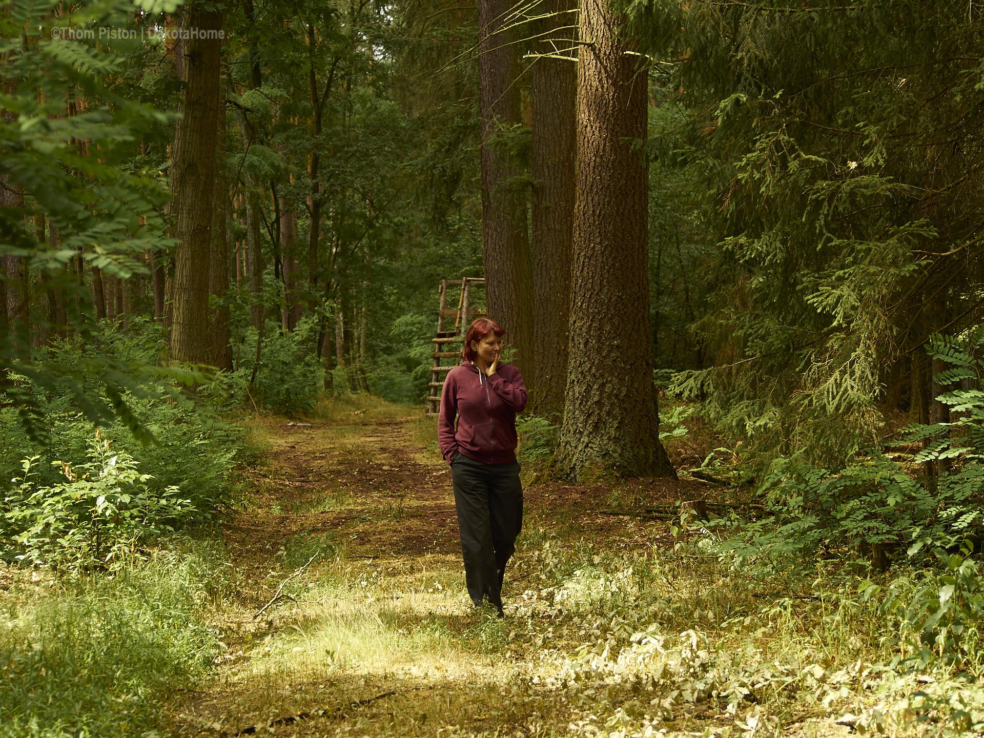 die hübscheste Frau der Welt im Wald..