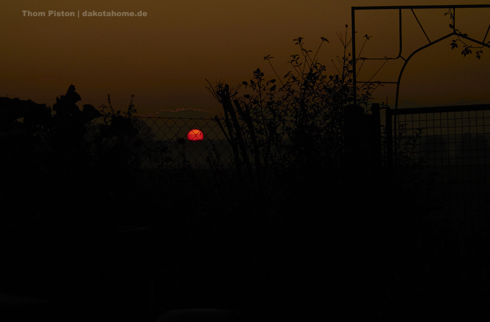 Sonnenuntergang, mitte November,Brandenburg
